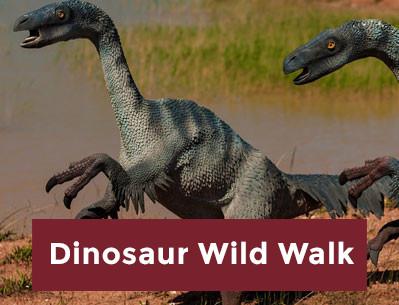 Dino Wild Walk