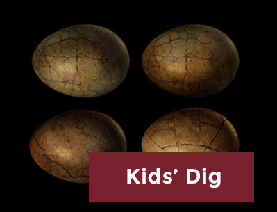 Kids' Dig