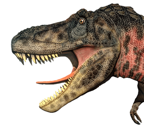 Home - Royal Gorge Dinosaur Experience