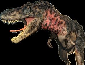 small-rex